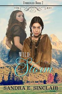 Wild Storm by Sandra Sinclair