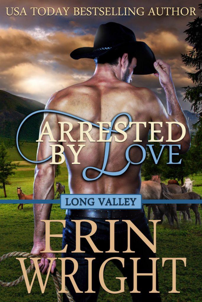 Western Romance Cowboy Novel