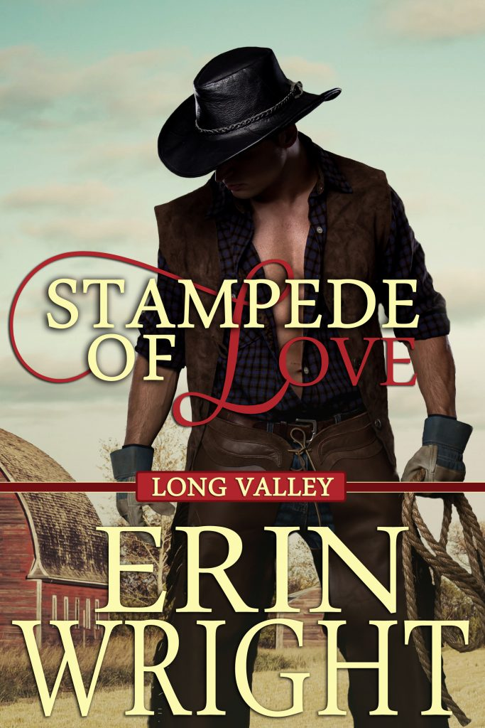 bull rider western romance novel