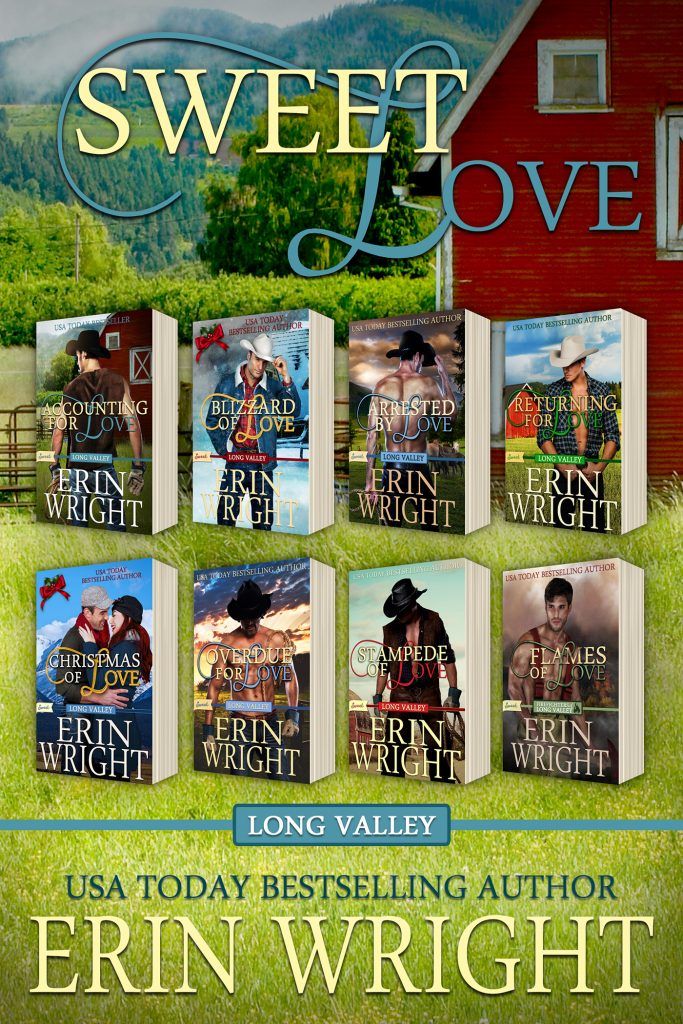 sweet western romance novels erin wright