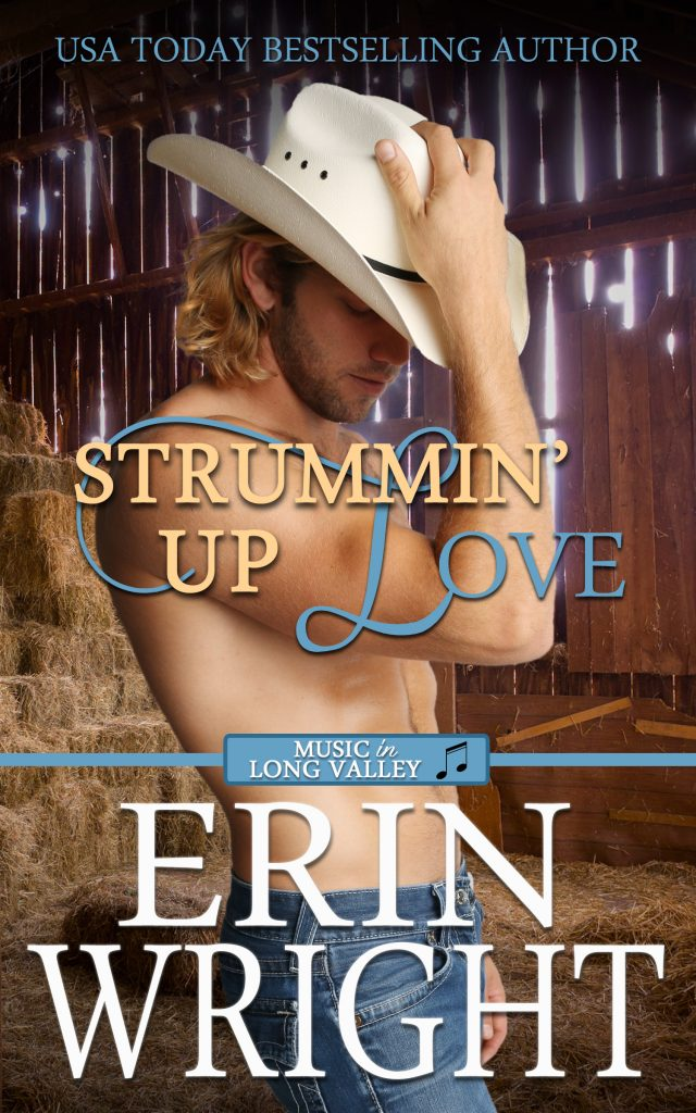 country music singer love story western romance novel