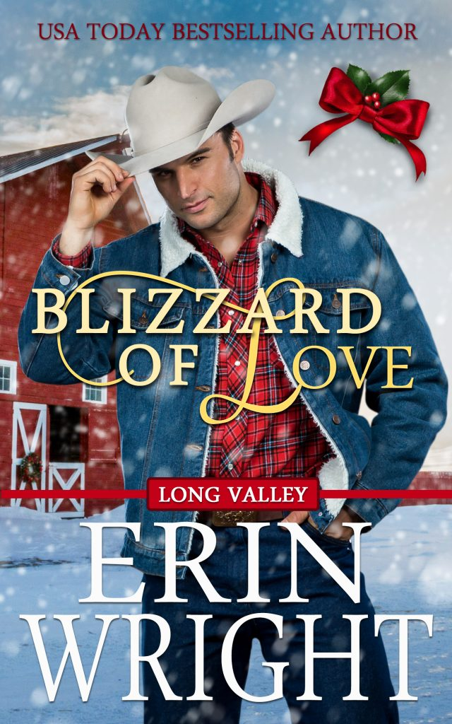 christmas holiday novella blizzard snowstorm cowboy love story contemporary western romance book city girl country boy