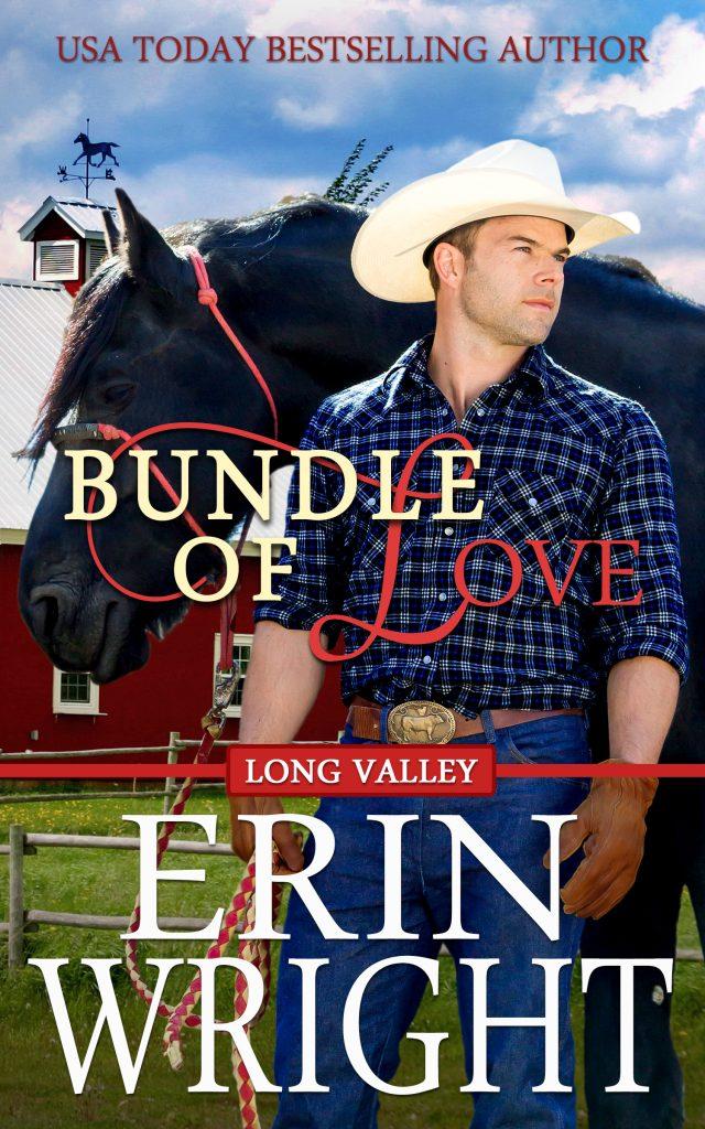 cowboy romance, veterinarian, contemporary western romance novel book older man younger woman secret baby horses