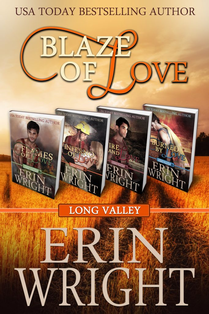 Blaze of Love by Erin Wright
