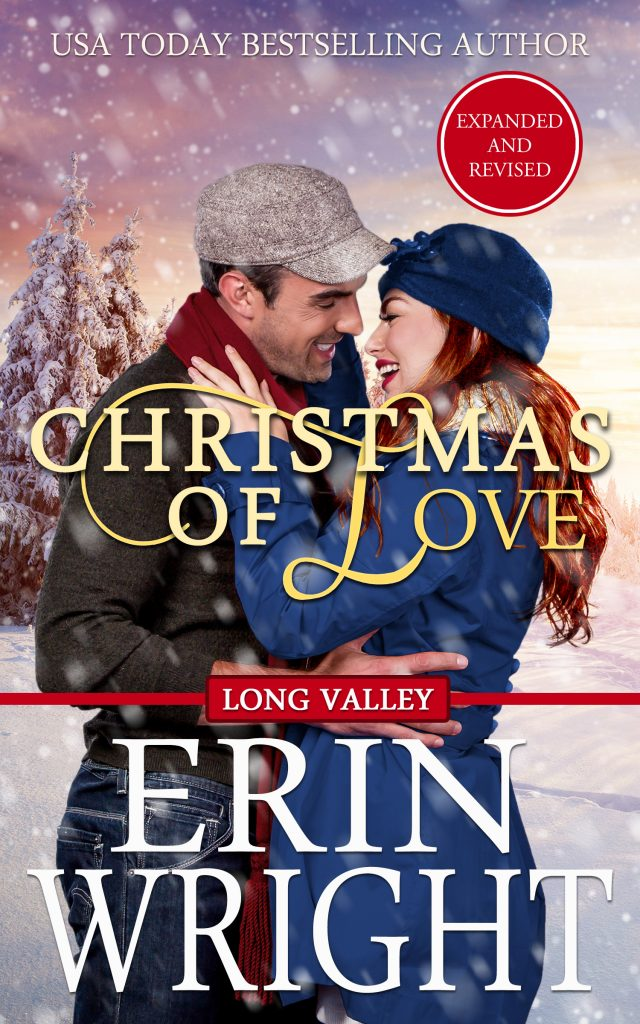 holiday christmas novel contemporary western romance book cowboy love story city girl idaho wilderness